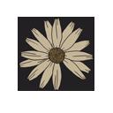 Symbol of Leos