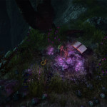 Wraithrim: A spell gone bad